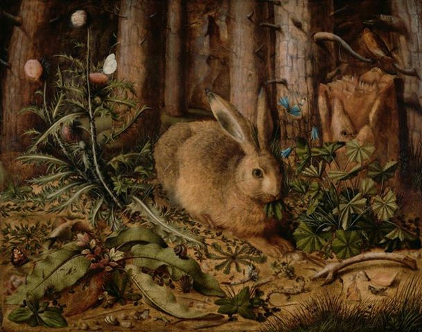 A Hare in the Forest, Hans Hoffmann, ca. 1585
